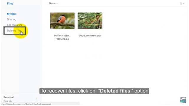 How to recover permanently deleted photos from android?